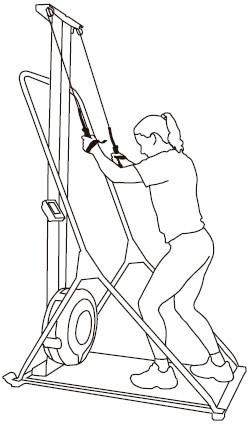 SkiErg Technique Variation